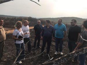AK Parti milletvekili yanan alanda incelemelerde bulundu