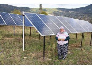 Evinin bahçesine güneş enerji santrali kuran Kezban teyze devletten destek bekliyor