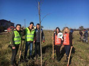 Kırklareli'de gençler ıhlamur ağacı dikti