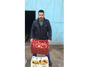 Senirkent'te Afrin'deki Mehmetçik için '1 kasa elma kampanyası'