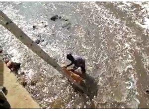 Dereye düşen sokak köpeğini kurtarmak için kıyafetleriyle suya atladı