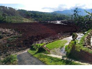 Endonezya'da toprak kayması: 5 ölü