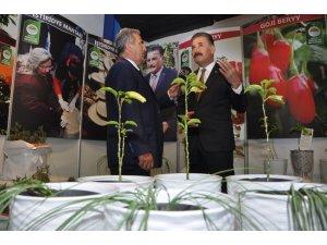 Tarım Fuarı'nda Toroslar'ın standına yoğun ilgi