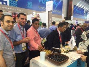 Ortadoğu yemekleri Türk zeytinyağıyla lezzetleniyor