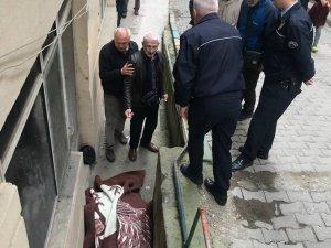 Yaşlı adam yolda kalbine yenik düştü
