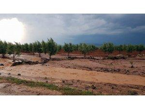 Yağmur ve dolu yağışı Kilis'te büyük hasara yol açtı