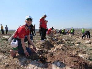 Eskişehir'de 10 bin meşe palamudu toprakla buluştu