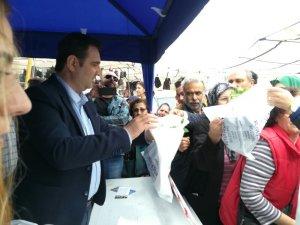 Aydın Büyükşehir Belediyesi Söke'de 50 bin fide dağıttı