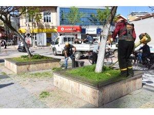Düzce'de park ve bahçeler bakıma alındı