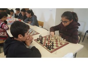 Sincik'te satranç turnuvası düzenlendi