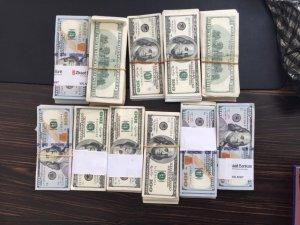 FETÖ'cünün evinde 90 bin dolar para çıktı