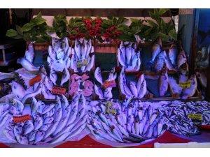 Balıkçılar kapanan av sezonunu değerlendirdi