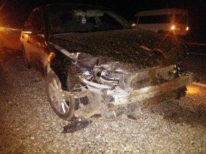 Otomobilin çarptığı 20 koyun telef oldu