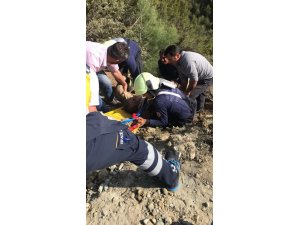 Kamyon uçurumdan yuvarlandı: 1 ölü