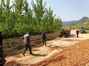 Vezirhan'da bahçe yolları yenileniyor