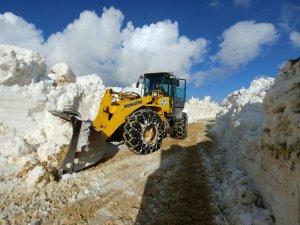 Trabzon'da yayla yolları ulaşıma açılıyor