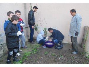 Özel öğrencilerden mantarın yolculuğu çalışması