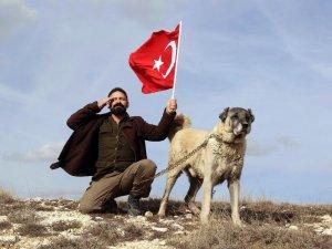 Türk Kangalı, ABD'nin aslanına karşı