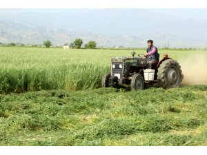 Alaşehir Belediyesinden hayvancılığa tam destek