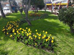 İlkadım'da 23 Nisan öncesi bahar temizliği