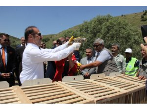 Yozgat'ta 3 bin 500 kınalı keklik doğaya salındı