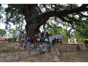 Kuşadası'nda Anıt Ağaç ve Tüllüşah Vadisi turu