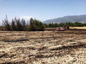 Seydikemer'deki çıkan yangın 2 hektar alan zarar gördü