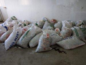 Van'da kaçak avlanmış inci kefali balığı ele geçirildi