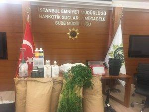 İstanbul'da yılın ilk 5 ayında 6 ton uyuşturucu ele geçirildi