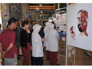 Sanatın ve tıp biliminin kesiştiği sergi