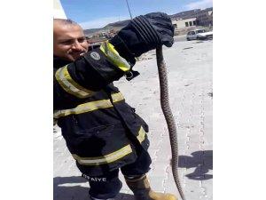İkinci katın balkonundaki yılanı itfaiye ekipleri yakaladı