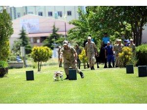 Nevşehir'de Jandarmanın 179.kuruluş yıl dönümü kutlandı