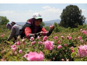 Güller Diyarı Isparta'da çifte bayram yaşanacak