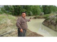 Bolu'da, şiddetli yağmur ve dolu tarladaki ürünlere zarar verdi