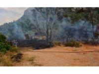 Güney Kıbrıs'ta çıkan yangın KKTC'yi alarma geçirdi