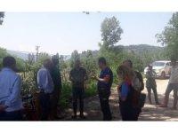 Osmaneli'nde dolu yağışı tarımsal alanda zarara yol açtı