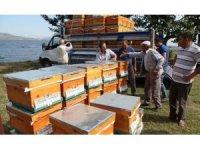 Çanakkale'de üreticilere arılı kovan dağıtımına başlandı