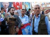 Develeriyle gezerek Erdoğan için destek istiyor