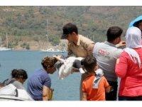 Sürat botunda 15 sığınmacı yakalandı
