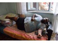 Kemancının durumu için Sağlık İl Müdürlüğü devreye girdi