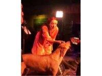 Leman Sam şarkı söylerken sokak köpeği sahneye fırladı