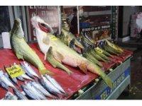 Elazığ'da sezonun ilk dev turna balığı yakalandı