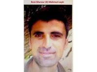 PKK'nın 'Panzer Kemal'in yerine geçirdiği o terörist de öldürüldü
