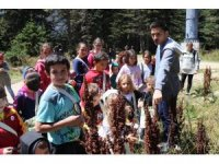 Doğa ve Bilim Şenliği Uludağ'ı renklendirdi