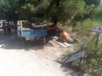 Traktör şarampole uçtu: 2 kişi hayatını kaybetti, 3 hayvan telef oldu