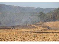 Tarım arazisinde başlayan yangında 15 hektar alan zarar gördü