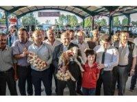 Taşköprü'de en iyi sarımsak üreticisi ve en iyi buzağı yetiştiricisi yarışması düzenlendi