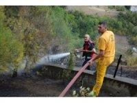 Niksar'da mezarlık yangını