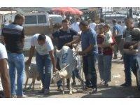 Vatandaşlar bayramın ilk gününde kurban pazarlarına akın etti