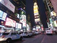 New York'ta Times Meydanı'na arı baskını